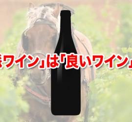 「自然派ワイン」は「良いワイン」なのか