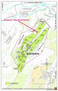 Bouzeron ブーズロンのモノポール