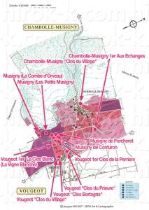 Chambolle-Musigny, Vougeot シャンボール・ミュジニーとヴージョのモノポール