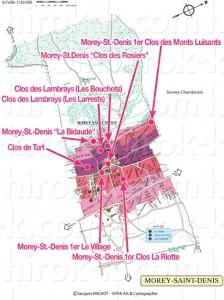 Morey-Saint-Denis モレ・サン・ドニのモノポール