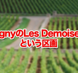 PulignyのLes Demoisellesという区画