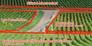Les DemoisellesとMontrachet、Chevalier-Montrachet、Bâtard-Montrachetの位置関係