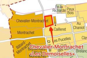 Les Demoisellesのグラン・クリュ部分