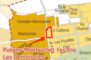 Les Demoisellesのプルミエ・クリュ部分